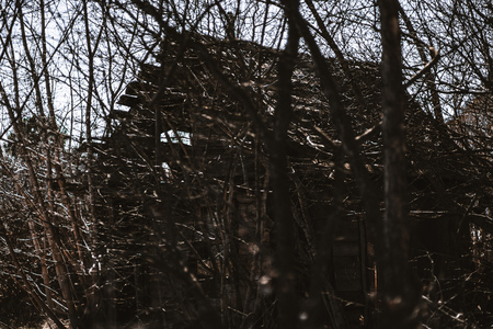 Abandoned old dilapidated wooden country house with plenty of branches around, springtime; forsaken tumble-down ancient cottage or shack surrounded by bare autumn trees, vibes of desolation Stock Photo