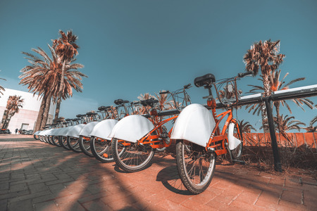 A long row of rental red parked bicycles on Barcelona street surrounded by palm trees; wide-angle view of the bikes plugged into their parking place and stretching into the distance on a sunny day Banco de Imagens