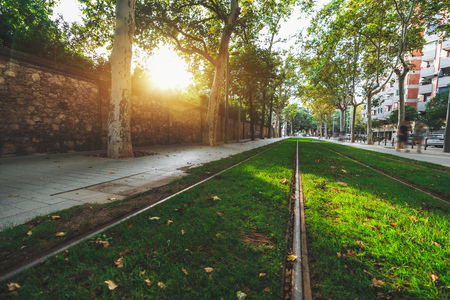 Beautiful autumn street with two tramways overgrown with a green grass; wide-angle view of two railroad tracks for a tram in urban settings, summer trees and stone wall on the sides Banco de Imagens