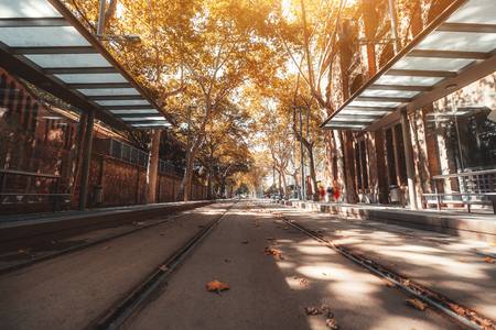 Wide-angle view from the ground of two tramway tracks at a modern tram station stretching into the distance in a corridor of yellowed trees and shadows on asphalt, warm sunny day, Barcelona, Spain Banco de Imagens