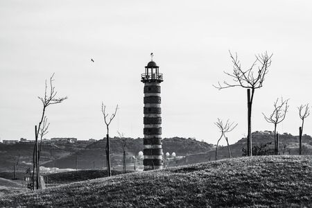Black and white shot through the bare saplings and low hills of the Japanese garden of the Belem Lighthouse in Lisbon, Portugal, with a flying bird in a clear sky