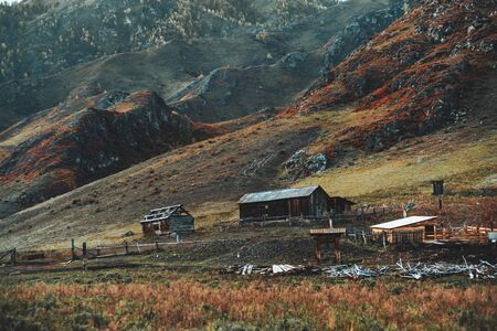 Multiple semi-abandoned wooden huts and livestock pens in Altai mountains of Russia with fence enclosing pastures and meadows overgrown with native grasses, an autumn hill ridge in the background