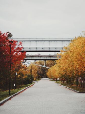 Vertical shot of autumn paved alley with yellowed trees and street lanterns on both sides and two bridges in the distance: a closed metro bridge and transport bridge behind; Novosibirsk, Russia