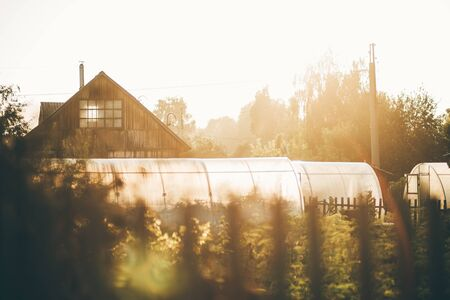 View with a shallow depth of field of a summer garden, several greenhouses, and a country house with a triangle roof backlit by evening sun, warm summer vibes, wooden fence in a defocused foreground Zdjęcie Seryjne