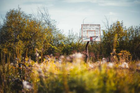 View with selective focus on an abandoned outdoor basketball backboard and basket with wooden faded timber and rusty metal ring, everything is overgrown with tall grass, bushes, and trees; evening sky Stock Photo
