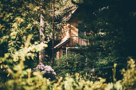 View of a beautiful old wooden summer house with a balcony in the countryside, in the shadow and half-hidden behind different trees and bushes of the wood; an antique dacha cottage on a warm sunny day