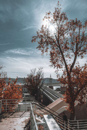 Wide-angle vertical autumn cityscape with a long pedestrian overhead passage following to a lighthouse near the river in the distance, a yellowed tree in the foreground, Belem, Lisbon, Portugal