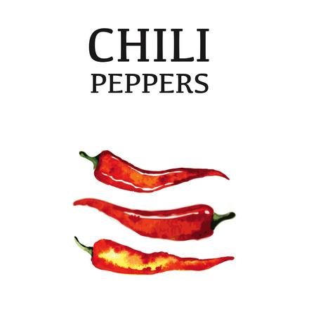 Pimienta de chile rojo aisladas sobre fondo blanco. Alimentos orgánicos saludables. Ilustración de dibujo vectorial mano de la vendimia. Foto de archivo - 42642793