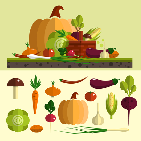 egg plant: Vegetables icons vector set in flat style. Isolated food design elements, pumpkin, carrot, beet root, cabbage, garlic, egg plant. Healthy food and organic farm background.
