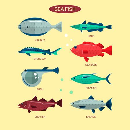 Pesce vettore impostato nella progettazione piatto stile. Oceano, mare e fiume pesci icons collection. Salmone, fugu, branzino, storione. Vettoriali