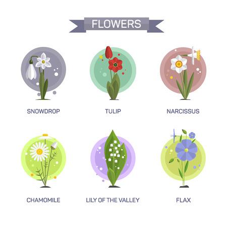 Bloemen vector set op een witte achtergrond. Illustratie in vlakke stijl design. Pictogrammen en emblemen. Tulp, kamille, sneeuwklokje, lelie, narcissen, vlas.