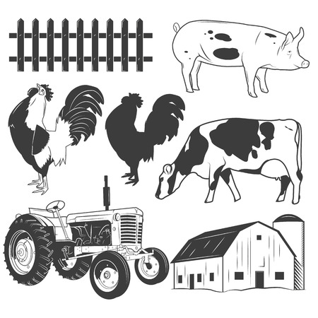 Agricultural objects vector set isolated on white background. Farming labels and icons. Tractor, farm animals, cow, pig, farmhouse.