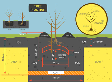 Planting tree concept illustration. Prepare soil for planting tree. Ilustração