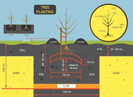 prepare: Planting tree concept illustration. Prepare soil for planting tree. Illustration