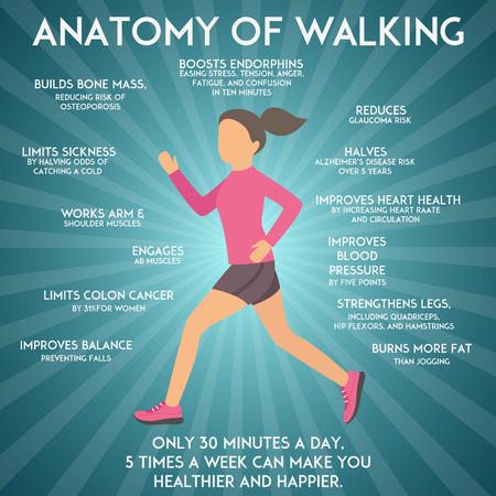 Wandelen effecten infographic vector illustratie. Fitness en sportconcept. Gezondheidsvoordelen van lopen en lopen.