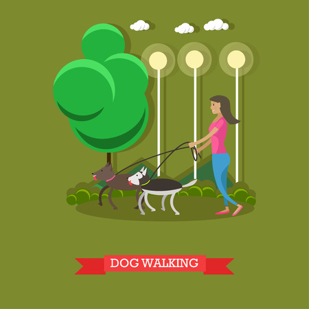 Woman walking with dogs in a park. Vector poster.