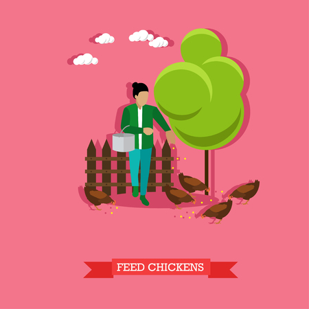 animal breeding: Farmer feeds the chickens on backyard with metal bucket in the hand. Farming, animal breeding. Vector illustration in flat design.