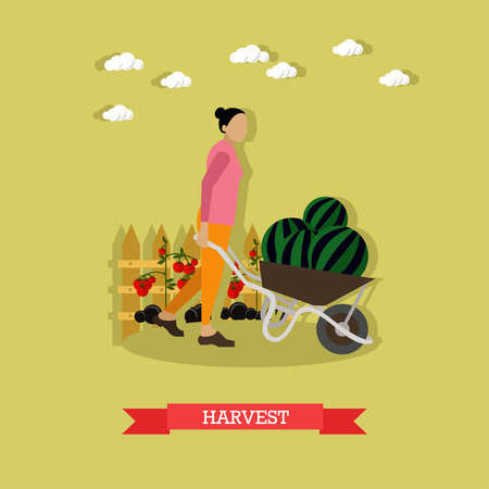 pushcart: Woman with pushcart full of watermelon. Harvesting and gardening concepts. Vector illustration in flat style