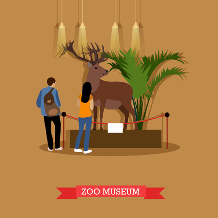 visitors: Vector illustration of stuffed deer in zoological museum. Visitors young man and woman watching exhibition of stuffed animals in zoo museum. Exposition room interior design element in flat style. Illustration