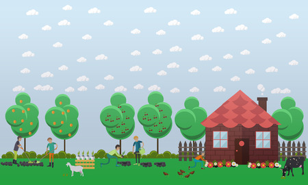 fertilizing: Country house, planting vegetables concept vector illustration in flat style. Gardeners men tilling, digging, fertilizing soil with garden tools, watering flowers.