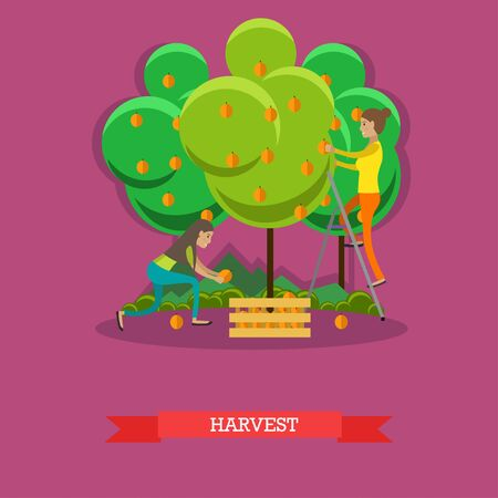 Harvesting concept vector illustration in flat style.