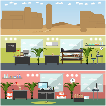 antiquities: Vector set of archaeological site, laboratory interior concept design elements Illustration