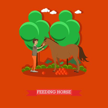 Vector illustration of horse breeder male feeding horse with fruit. Flat style design element. Illustration