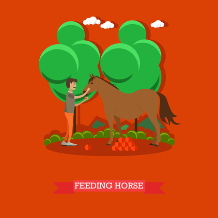 breeder: Vector illustration of horse breeder male feeding horse with fruit. Flat style design element. Illustration