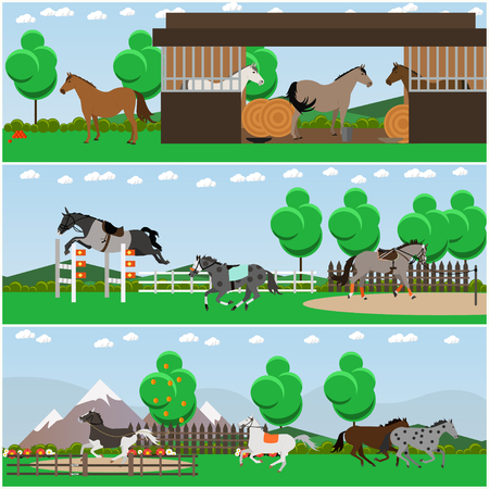 hedge: Vector set of horse riding interior flat posters, banners Illustration