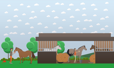 breeders: Vector illustration of stable with horse breeders male and female grooming animals, round hay bales. Horse breeding farm flat style design element.