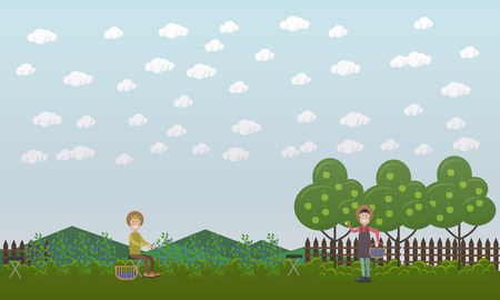 Vector illustration of men picking blueberries. Blueberry hunting season concept. Flat style design.