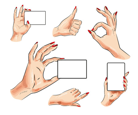 Vector human hand icon set. Female hand with card and thumb up, pointing finger, okay hand signs isolated on white background. Stock Photo