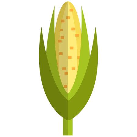 Sweet maize icon, flat vector isolated illustration. Ear of corn. Farm fresh vegetable. Healthy food.
