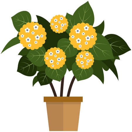 Potted flower with blooming yellow bud flat vector