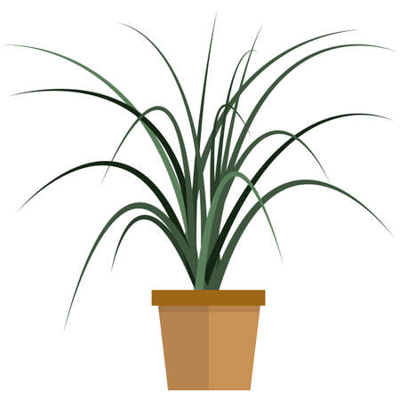 Green plant in pot for home decoration flat vector