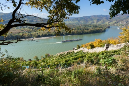 Danube with passenger ship and terraced fields with vines; Austria