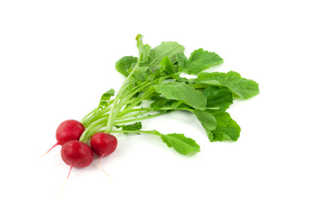 A bunch of fresh radishes in front of white