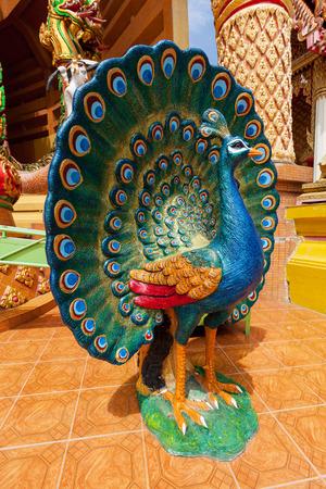 pavo real: Pavo real colorido en el templo Wat Tham Sua en Kanchanaburi; Tailandia