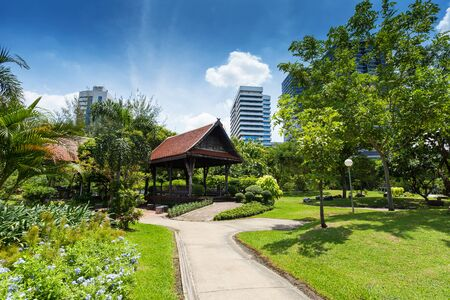 silom: Lumphini Park in Bangkok with skyscrapers in the background