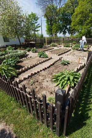 flower garden path: Small garden with vegetable patch and flower bed