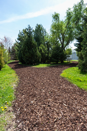 Garden Path with bark mulch on a sunny spring day Stock Photo