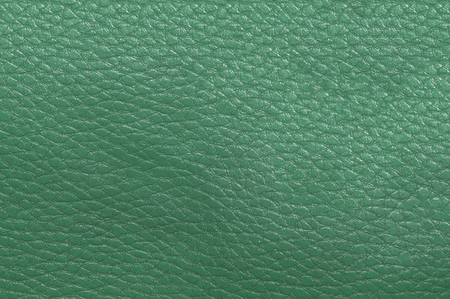 streaked: Light green skin, streaked. Leather texture. Closeup