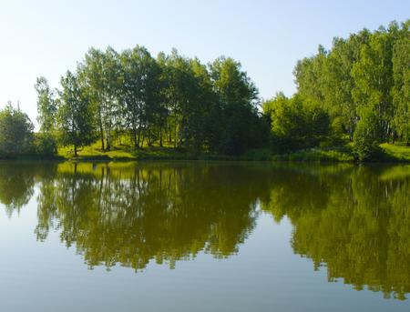 Forest lake under blue sky
