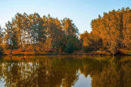 Autumn trees reflected in a forest lake