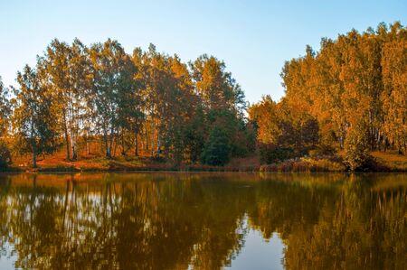 Herfstbomen weerspiegeld in een bosmeer