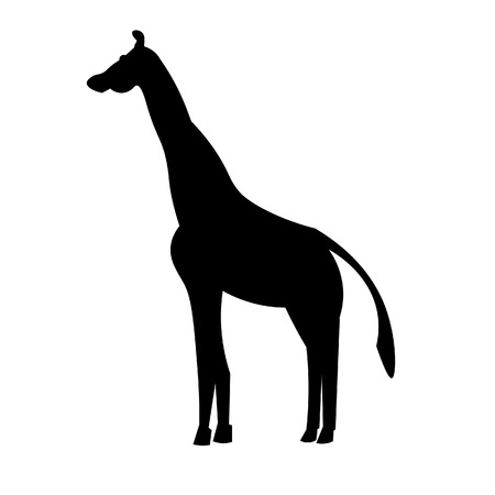 This vector image shows a standing african giraffe in glyph icon design. It is isolated on a white background.
