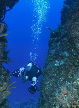 Scuba diver between reef walls with blue water background