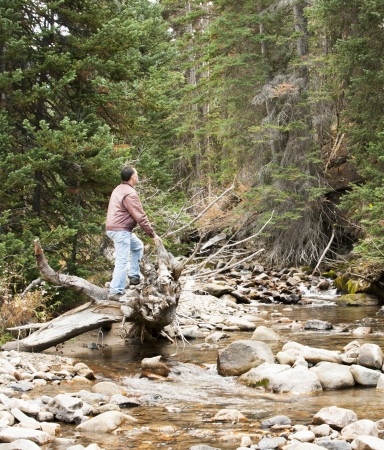 cottonwood canyon: A man standing on a log looking up over a stream running through the woods in Little Cottonwood Canyon in Utah Stock Photo