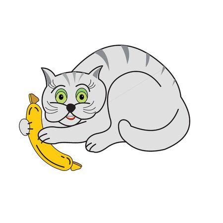 Gray cat with sausage