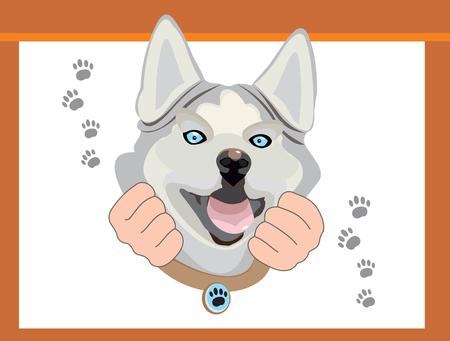 Husky, the dog is smiling vector illustration. Ilustração